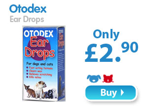 Otodex  Ear Drops  Only £2.90