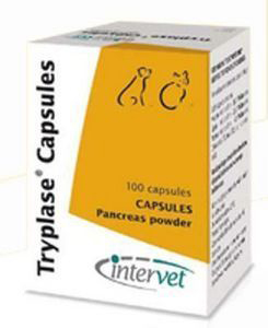 Tryplase Capsules for Dogs & Cats