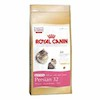 Royal Canin Persian 32 KITTEN Katzenfutter