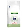 Royal Canin Pediatric (früher Kitten) Growth Katzenfutter