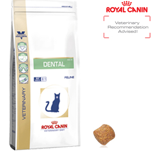 Where To Buy Royal Canin Dental Cat Food