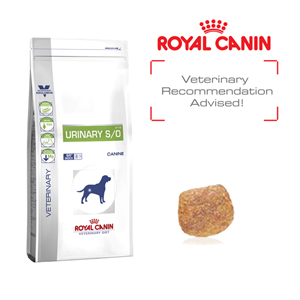 royal canin canine urinary s o food urinary health wellbeing dogs. Black Bedroom Furniture Sets. Home Design Ideas