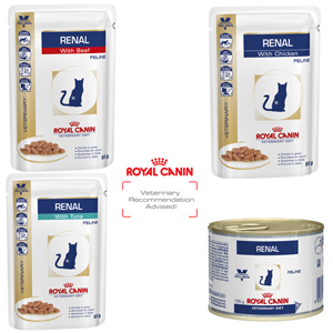 royal canin veterinary diet feline renal food renal. Black Bedroom Furniture Sets. Home Design Ideas