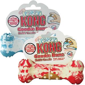 Kong Puppy Goodie Bone